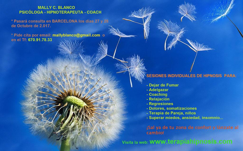 Sesiones en BARCELONA: 27 y 28 de Octubre de 2.017