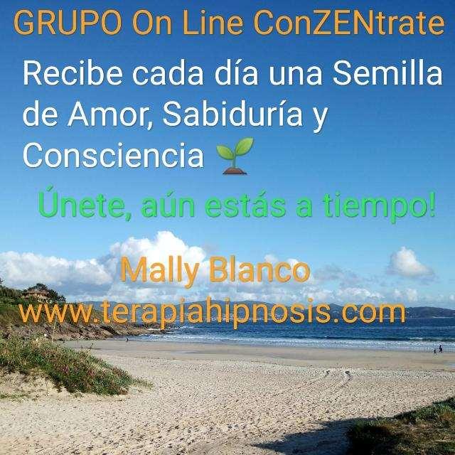 "CURSO ON LINE ""ConZENtrate"""